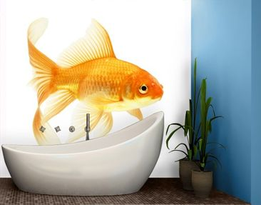 Produktfoto Photo Wall Mural Miss Goldfish