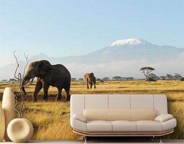 """Immagine del prodotto Carta da parati no.81 """"KILIMANJARO ELEPHANTS"""" 400x280cm"""