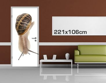 Product picture Door Photo Wall Mural Snail Pace
