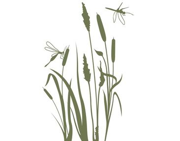 Product picture Wall Decal no.MW100 Reed Idyll