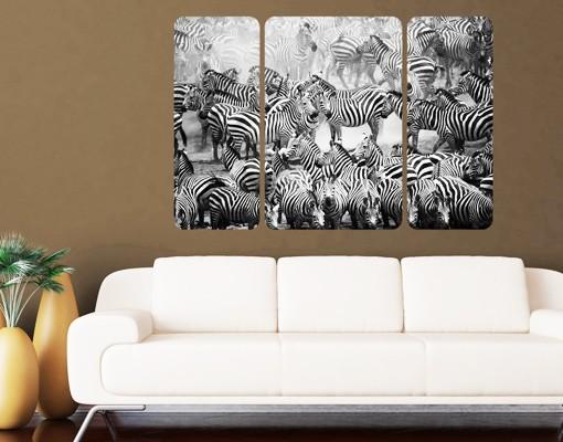 Produktfoto Selbstklebendes Wandbild Zebraherde II Triptychon II