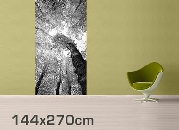 Product picture Photo Wall Mural Trees Of Life II