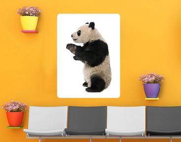 Produktfoto Wall Mural Standing Panda