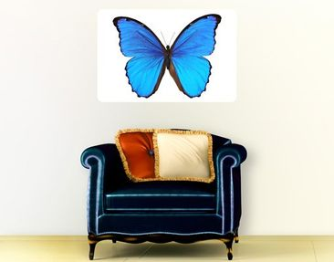 Produktfoto Wall Mural Blue Morpho