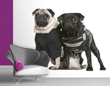 Immagine del prodotto Carta da parati adesiva - Pug Fashion