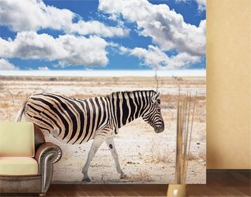 Produktfoto Photo Wall Mural Zebra From Savannah