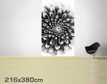 Product picture Photo Wall Mural Aster II
