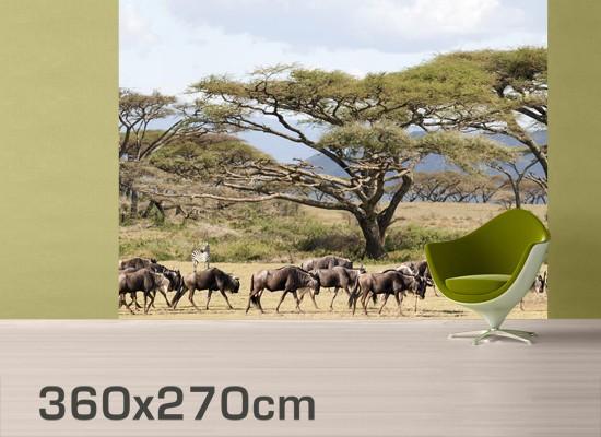 Produktfoto Fototapete Afrika selbstklebend - Gnuherde in der Savanne