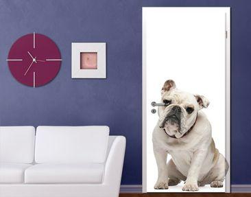 Produktfoto TürTapete Skeptische Bulldogge
