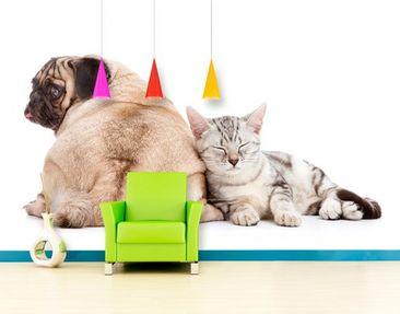 Produktfoto Selbstklebende Tapete - Fototapete Möpschen und Kätzchen