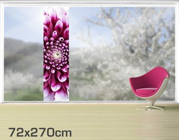 Product picture XXL Window Mural Aster
