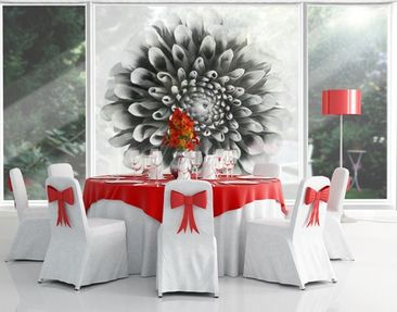Product picture XXL Window Mural Aster II