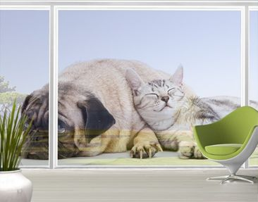 Produktfoto XXL Window Mural Best Friends