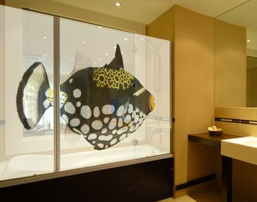Produktfoto XXL Window Mural Clown Triggerfish