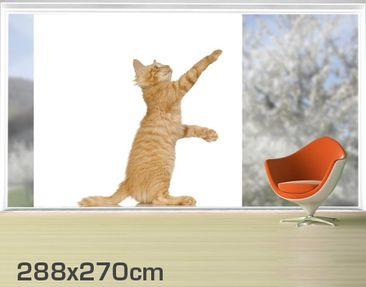 Product picture XXL Window Mural Kitty With Paw
