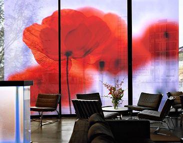 Produktfoto XXL Window Mural Magic Poppies