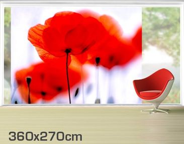 Product picture XXL Window Mural Magic Poppies