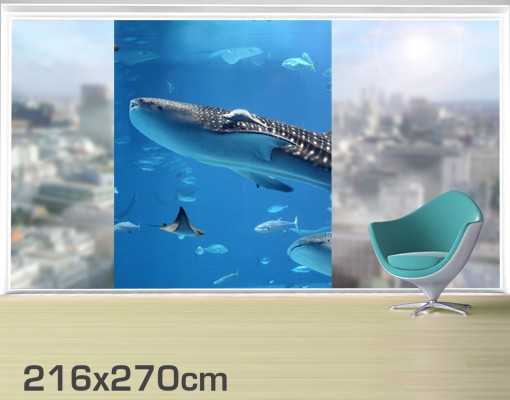 Produktfoto Fensterfolie - XXL Fensterbild Fish in the Sea - Fenster Sichtschutz