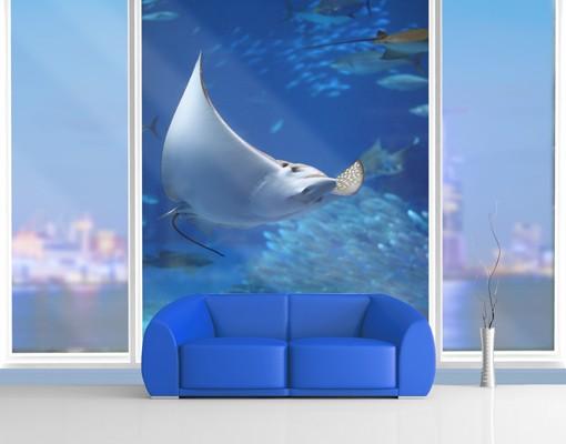 Produktfoto Fensterfolie - XXL Fensterbild Batoidea - Fenster Sichtschutz
