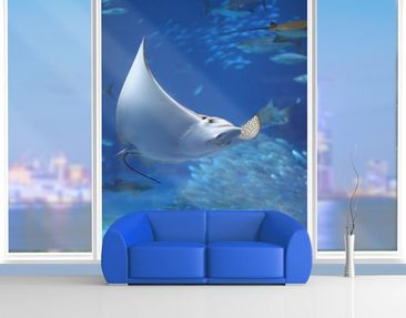 Product picture XXL Window Mural Batoidea