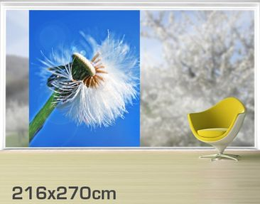 Product picture XXL Window Mural Blown Away