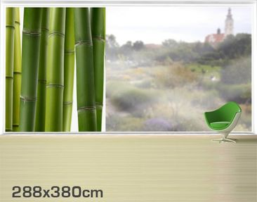 Product picture XXL Window Mural Bamboo Plants