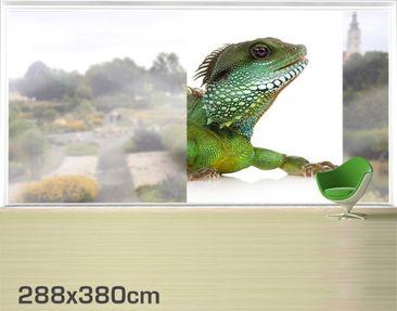 Product picture XXL Window Mural Green Iguana