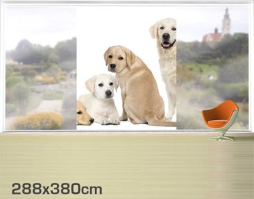 Product picture XXL Window Mural Dog Gang 1