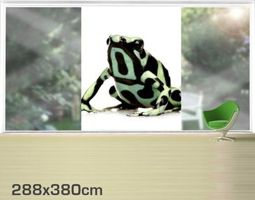 Product picture Photo Wall Mural Zebra Frog