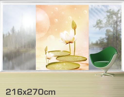 Produktfoto Fensterfolie - XXL Fensterbild Seerosen Zauber - Fenster Sichtschutz