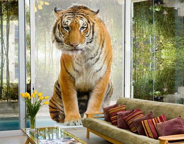 Product picture XXL Window Mural Sitting Tiger