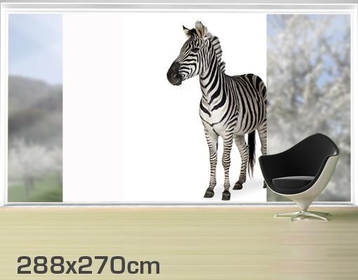 Produktfoto Fensterfolie - XXL Fensterbild Zebra I - Fenster Sichtschutz