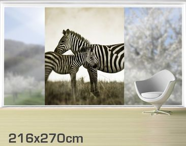 Product picture XXL Window Mural Zebra Pair