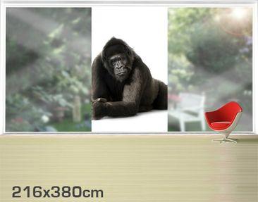 Product picture XXL Window Mural Gorilla II