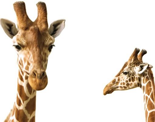 Produktfoto Fensterfolie - XXL Fensterbild Zwei Giraffen - Fenster Sichtschutz