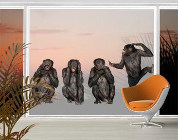 Immagine del prodotto XXL Pellicola per vetri - Clique Of Monkeys