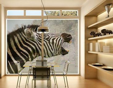 Produktfoto Fensterfolie - XXL Fensterbild Brüllendes Zebra - Fenster Sichtschutz
