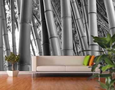 Produktfoto Fototapete Bambus - Bamboo - selbstklebende Vinyltapete