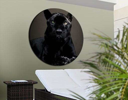 Produktfoto Leinwandbild Kreis Black Puma