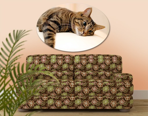 Produktfoto Leinwandbild Oval Cat Chill Out