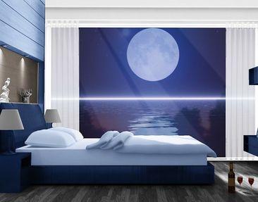 Produktfoto XXL Window Mural Silver Moon Rise