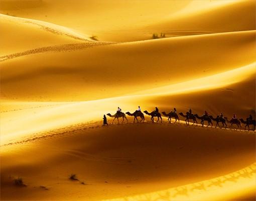 Produktfoto Fliesenbild Golden Dunes