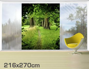 Product picture XXL Window Mural Hidden Glade