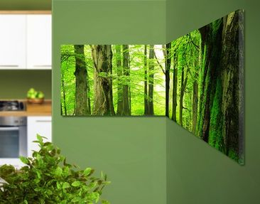 Product picture Corner Canvas Art Mighty Beech Trees...