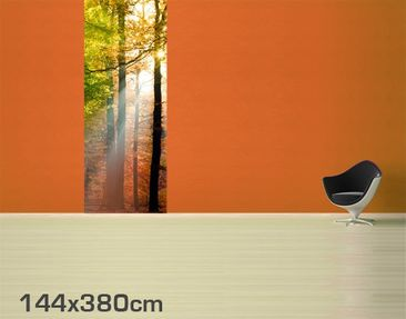 Product picture Photo Wall Mural Morning Light