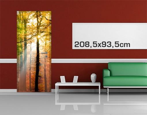 Produktfoto Türtapete Wald selbstklebend - Morning Light