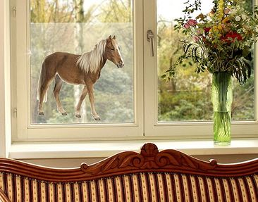 Immagine del prodotto Decorazione per finestre Pony
