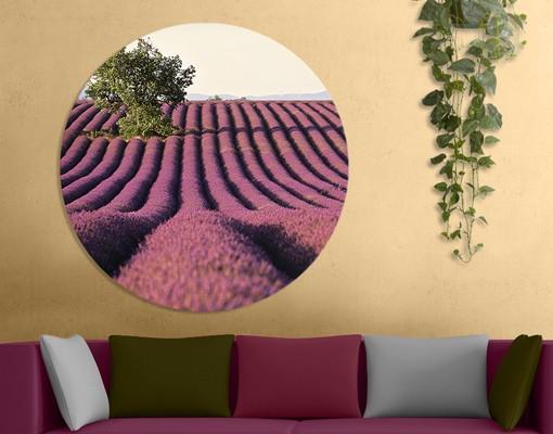 Produktfoto Leinwandbild Kreis Lavender