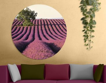 Product picture Canvas Art Circle Lavender