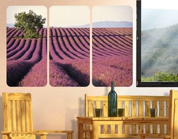 Product picture Wall Mural Lavender Triptych I